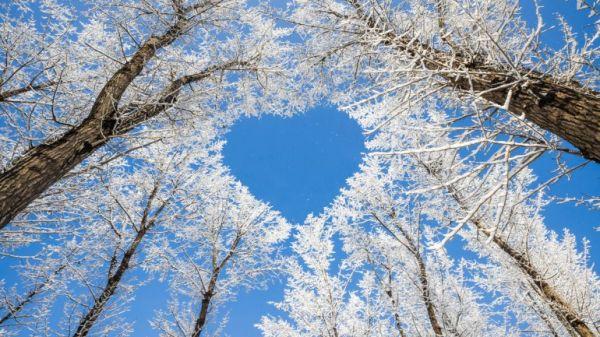 Погода на 7 декабря: на Днепропетровщине ясно – 34 телеканал